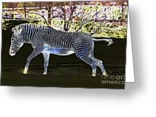 Blue Zebra Greeting Card