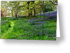 Bluebell Way Greeting Card