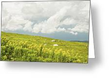 Blueberry Field And Goldenrod With Dramatic Sky In Maine Greeting Card by Keith Webber Jr