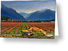 Blueberry Field Excavator Greeting Card