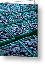 Blueberry Season In Maine Greeting Card