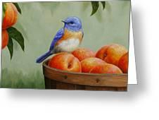 Bluebird And Peaches Greeting Card 3 Greeting Card