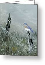 Bluebird On Post Greeting Card