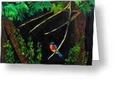 Bluebird Shimmer Greeting Card