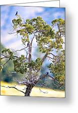 Bluebird Tree Greeting Card