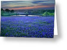Bluebonnet Lake Vista Texas Sunset - Wildflowers Landscape Flowers Pond Greeting Card