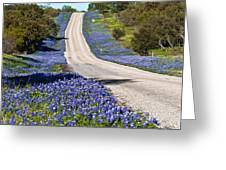 Bluebonnet Lined Hwy Greeting Card by Thomas Pettengill