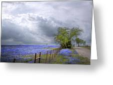 Bluebonnets And Spring Rain Greeting Card