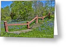 Bluebonnets And Stairs Greeting Card