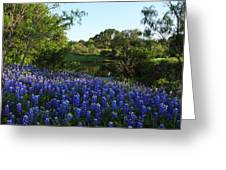 Bluebonnets By The Pond Greeting Card
