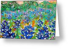 Bluebonnets Sunrise Greeting Card