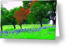 Bluebonnets With Red Flourish  Greeting Card