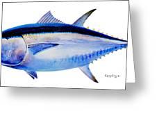Bluefin Tuna Greeting Card by Carey Chen