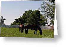 Bluegrass Summer Day Greeting Card by Roger Potts