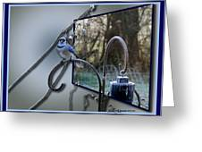 Bluejay Oob - Featured In 'out Of Frame' And Comfortable Art Groups Greeting Card