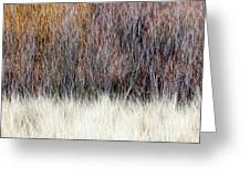 Blurred Brown Winter Woodland Background Greeting Card