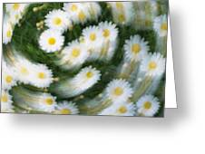 Blurred Daisies Greeting Card