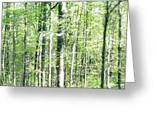 Blurred Trees Spring-1 Greeting Card