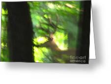 Blurry Buck Greeting Card