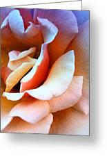 Blush Pink Palm Springs Greeting Card