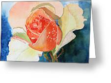 Blushing Bloom Greeting Card