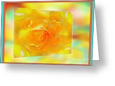 Blushing Yellow Rose Framed Greeting Card