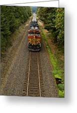 Bnsf Train 789 F Greeting Card