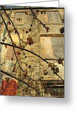 Boarded Windows And Branches Greeting Card