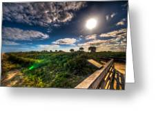 Boardwalk And Dunes Greeting Card