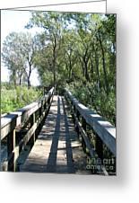 Boardwalk At Tifft Nature Preserve Buffalo New York Greeting Card