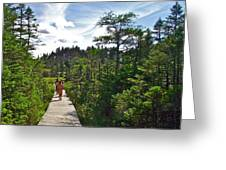 Boardwalk In Salmonier Nature Park-nl Greeting Card