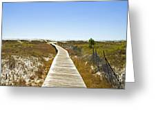 Boardwalk Greeting Card by Susan Leggett