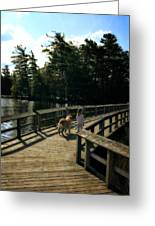 Boardwalking Greeting Card
