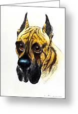 Boarhound Portrait Greeting Card