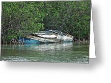 Boat Abandoned In The Mangroves Long Island Bahamas Greeting Card