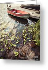 Boat At Dock  Greeting Card by Elena Elisseeva