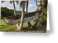 Boat In A Tree Puerto Rico Greeting Card