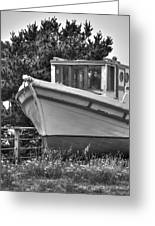 Boat Out Of The Water Greeting Card