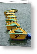 Dingy Boat Rentals Greeting Card