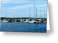 Boats At Newport Ri Greeting Card