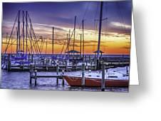 Boats In Awe Greeting Card