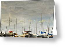 Boats In Harbor Reflection Greeting Card