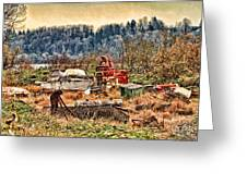 Boats In The Field Greeting Card