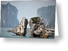 Boats In Vietnam Greeting Card
