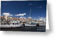 Boats Line Victoria Dock Hobar Greeting Card
