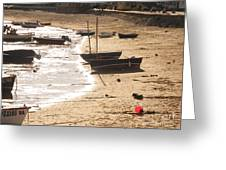 Boats On Beach 02 Greeting Card by Pixel  Chimp