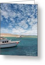 Boats On The Red Sea Coast Greeting Card