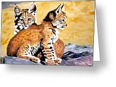 Bob Kittens Greeting Card by Phyllis Kaltenbach