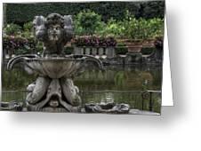 Boboli Fountain Greeting Card