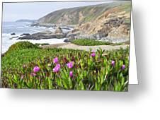 Bodega Head View Greeting Card